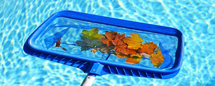 The Importance of Regular Pool Maintenance